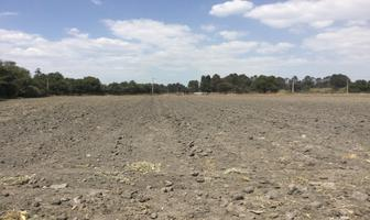 Foto de terreno habitacional en venta en venta terreno san miguel xoxtla atras de ternium , san miguel xoxtla, san miguel xoxtla, puebla, 12844479 No. 01