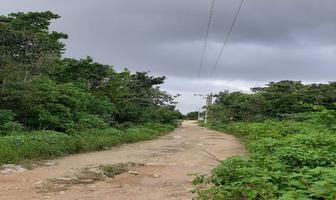 Foto de terreno habitacional en venta en venus , supermanzana 312, benito juárez, quintana roo, 0 No. 01