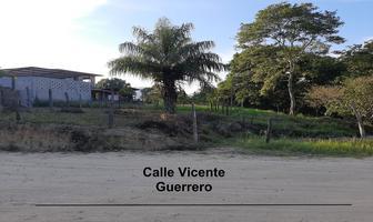 Foto de terreno habitacional en venta en vicente guerrero , el tuito, cabo corrientes, jalisco, 16906417 No. 03