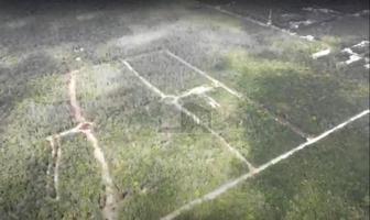 Foto de terreno habitacional en venta en village tulum , tulum centro, tulum, quintana roo, 0 No. 01