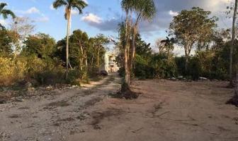 Foto de terreno habitacional en venta en  , villas tulum, tulum, quintana roo, 11732045 No. 02