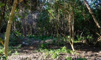 Foto de terreno habitacional en venta en  , villas tulum, tulum, quintana roo, 11856699 No. 01