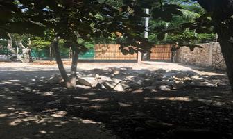 Foto de terreno habitacional en venta en xcunya , xcunyá, mérida, yucatán, 15284498 No. 01