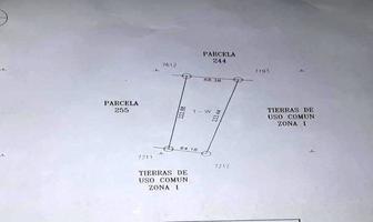 Foto de terreno habitacional en venta en  , yaxkukul, yaxkukul, yucatán, 13902589 No. 01