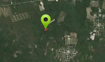 Foto de terreno habitacional en venta en  , yaxkukul, yaxkukul, yucatán, 14005819 No. 01