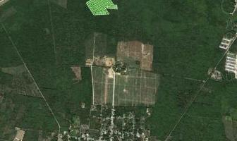 Foto de terreno habitacional en venta en  , yaxkukul, yaxkukul, yucatán, 14177714 No. 01