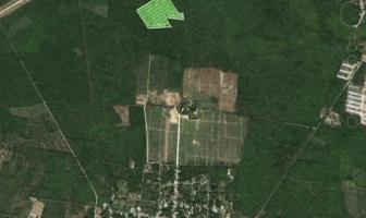 Foto de terreno habitacional en venta en  , yaxkukul, yaxkukul, yucatán, 14177734 No. 01