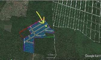 Foto de terreno habitacional en venta en  , yaxkukul, yaxkukul, yucatán, 14259841 No. 01