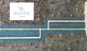 Foto de terreno habitacional en venta en  , yaxkukul, yaxkukul, yucatán, 4493190 No. 01