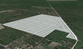 Foto de terreno habitacional en venta en  , yaxkukul, yaxkukul, yucatán, 0 No. 01
