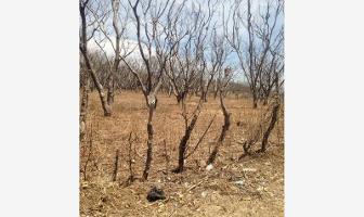 Foto de terreno habitacional en venta en  , zacualpan de amilpas, zacualpan, morelos, 6368369 No. 01