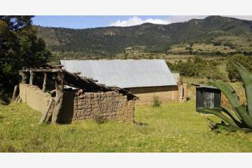 Foto de rancho en venta en  0, atotonilco, huehuetlán el grande, puebla, 2867608 No. 01