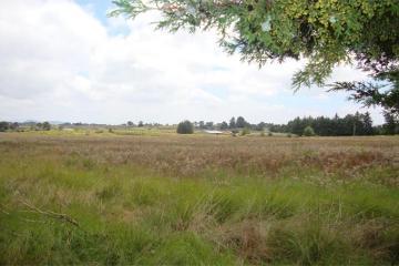 Foto de rancho en venta en  0, el pino, amealco de bonfil, querétaro, 2537908 No. 02