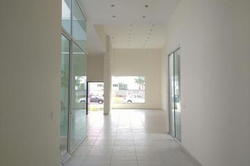 Foto de casa en venta en  0, residencial altaria, aguascalientes, aguascalientes, 2707178 No. 04