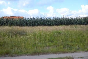 Foto de terreno industrial en venta en  00, san josé el conde, puebla, puebla, 2675847 No. 01