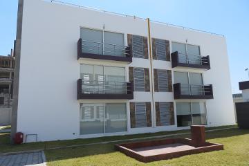 Foto de departamento en renta en Santiago Momoxpan, San Pedro Cholula, Puebla, 2994351,  no 01
