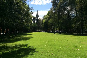 Foto principal de departamento en renta en alborada, parque del pedregal 1576995.