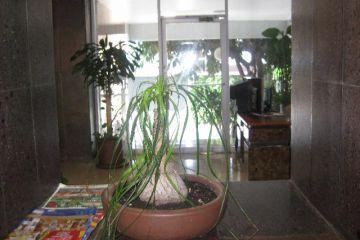 Foto de departamento en venta en Del Valle Centro, Benito Juárez, Distrito Federal, 2585557,  no 01
