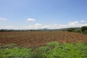 Foto de terreno industrial en venta en El Carrizal, Colón, Querétaro, 2982143,  no 01