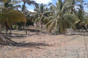 Foto de terreno habitacional en venta en Mezcalitos, Bahía de Banderas, Nayarit, 2996879,  no 01