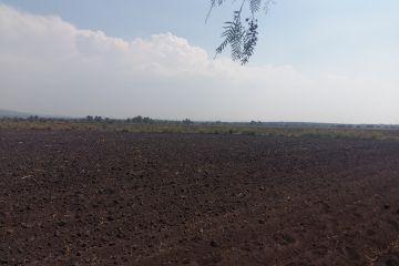 Foto de terreno industrial en venta en El Venado, Pedro Escobedo, Querétaro, 2815090,  no 01