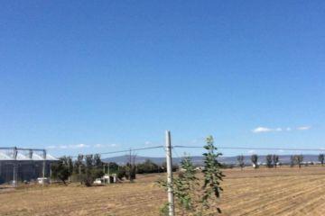 Foto de bodega en venta en El Tesoro del Campo, Pedro Escobedo, Querétaro, 2578371,  no 01