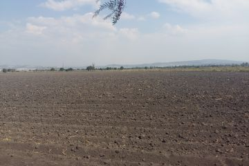 Foto de terreno industrial en venta en Coyotillos, El Marqués, Querétaro, 2814686,  no 01