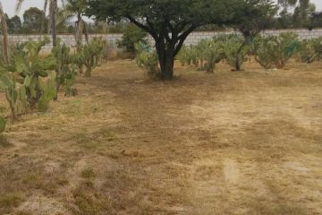 Foto de terreno habitacional en venta en La Piedra, Jesús María, Aguascalientes, 2964359,  no 01