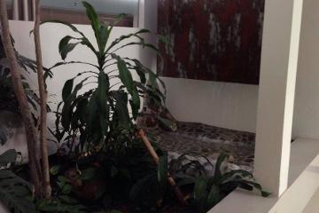 Foto de casa en venta en Puerta de Hierro, Zapopan, Jalisco, 3060165,  no 01