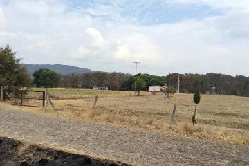 Foto de rancho en venta en  , amealco de bonfil centro, amealco de bonfil, querétaro, 1965183 No. 12