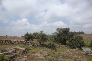 Foto de rancho en venta en  , amealco de bonfil centro, amealco de bonfil, querétaro, 2894716 No. 01