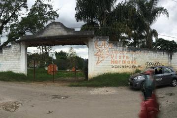 Foto de terreno comercial en renta en anáhuac , libertad, coatepec, veracruz de ignacio de la llave, 4599277 No. 01