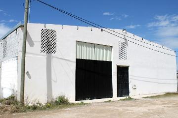 Foto de bodega en renta en avenida oriente 440, vista hermosa, saltillo, coahuila de zaragoza, 2956623 No. 01