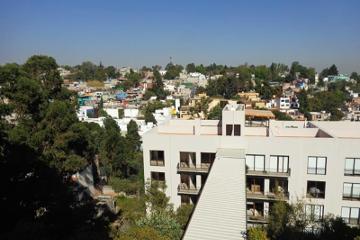 Foto de departamento en renta en  669, olivar de los padres, álvaro obregón, distrito federal, 2878676 No. 01