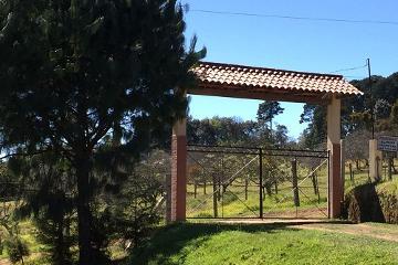Foto principal de rancho en venta en barrio de maquixtla, zacatlán centro 2969328.