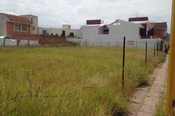 Foto de terreno comercial en renta en  , bosques del prado norte, aguascalientes, aguascalientes, 2631320 No. 01