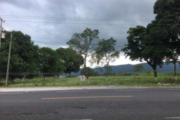 Foto de terreno comercial en renta en Venta Parada, Amatlán de los Reyes, Veracruz de Ignacio de la Llave, 3822801,  no 01