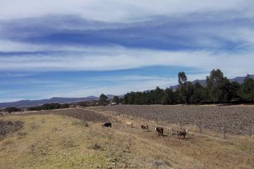 Foto de rancho en venta en Amealco de Bonfil Centro, Amealco de Bonfil, Querétaro, 3022466,  no 01
