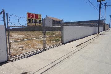 Foto de terreno habitacional en venta en calle laurel , basso, playas de rosarito, baja california, 0 No. 01