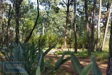 Foto principal de terreno habitacional en venta en camino a cerro gordo, valle de bravo 2969947.