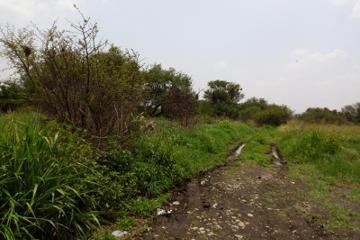 Foto principal de terreno habitacional en venta en camino a la norita, los ángeles 2863732.