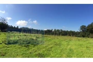 Foto principal de rancho en venta en camino a los saucos, los saúcos 2969989.