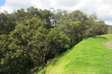 Foto de casa en venta en camino a san pedro kilometro 34 21, bosques del renacimiento, amealco de bonfil, querétaro, 2823861 No. 04