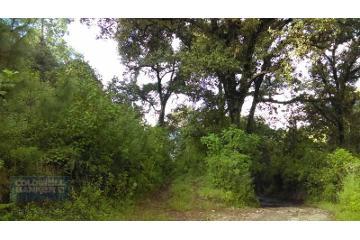 Foto principal de terreno habitacional en venta en candelaria , valle de bravo 2970003.
