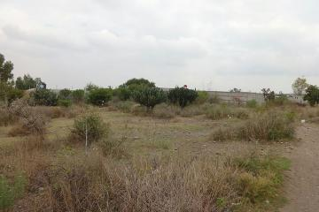 Foto principal de terreno habitacional en venta en cardenal, palmillas 2870055.