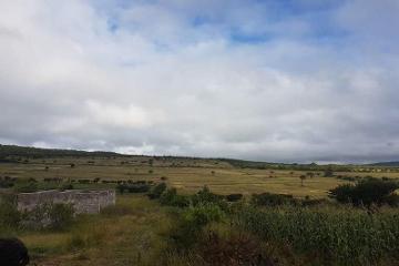 Foto de terreno comercial en venta en carretera a huimilpan kilometro 14.5, santa teresa, huimilpan, querétaro, 0 No. 01