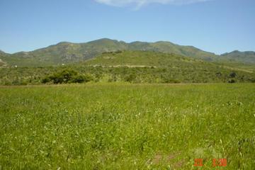 Foto de terreno comercial en venta en carretera ags. - calvillo 000, gral. ignacio zaragoza, jesús maría, aguascalientes, 2676718 No. 01