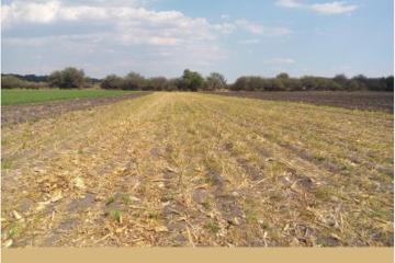 Foto de terreno industrial en venta en carretera chichimequillas , la tinaja, querétaro, querétaro, 2775263 No. 01
