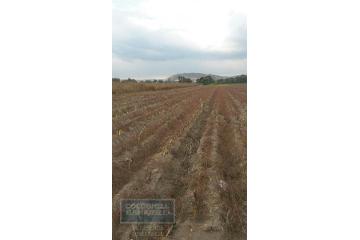 Foto de terreno comercial en venta en carretera mexico puebla , buenavista, huejotzingo, puebla, 2801264 No. 01