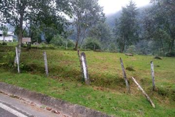Foto de terreno habitacional en venta en carretera xico 1, xico, xico, veracruz de ignacio de la llave, 0 No. 01
